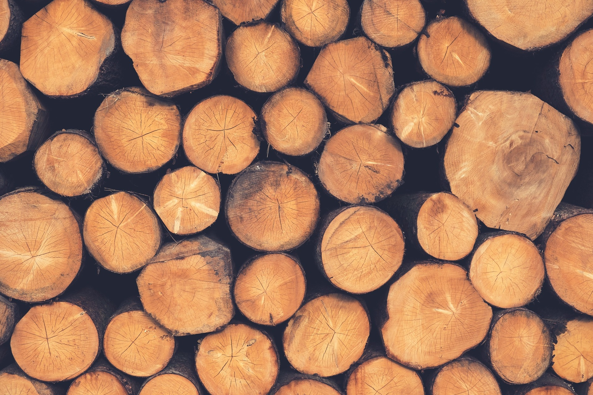 Timber Production and Science